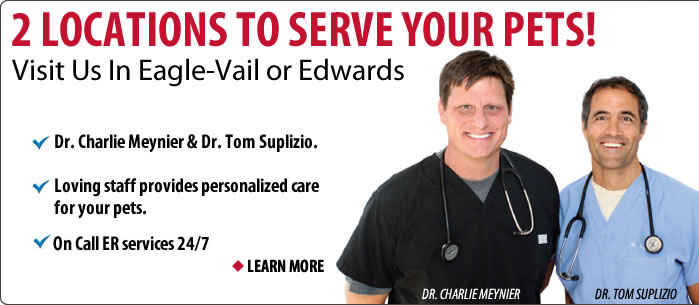 2 locations to serve your pet in the vail valley - Eagle Vail and Edwards.