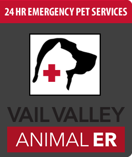 Vail Valley 24 hour pet emergency services - Vet's on Call!