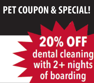 20 Percent Off Pet Dental Cleaning with 2 plus nights of pet boarding