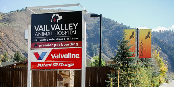 pet bathing and grooming fees and services - vail valley, co